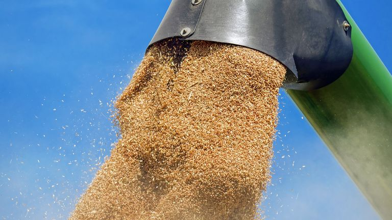 Certification in animal feed industry - Certification | TÜV NORD Integra