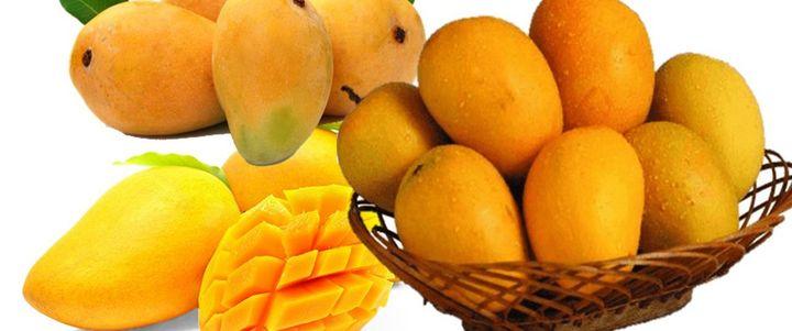 MANGO: Quality Assurance & Pesticide Residue Monitoring